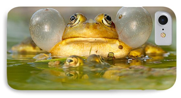 A Frog's Life IPhone 7 Case by Roeselien Raimond