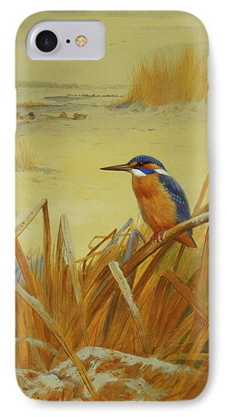 A Kingfisher Amongst Reeds In Winter IPhone Case by Archibald Thorburn