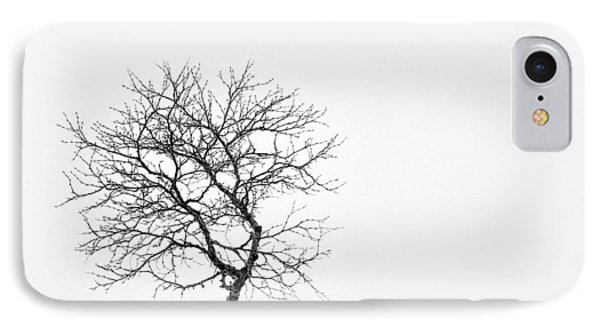 A Simple Tree IPhone Case by Dave Bowman