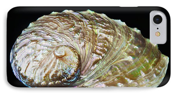 Abalone Shell Phone Case by Bill Brennan - Printscapes