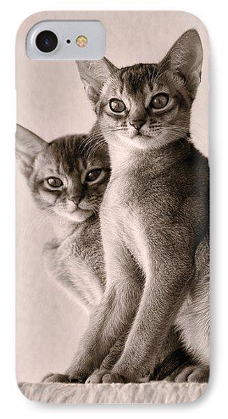 Abyssinian Kittens Phone Case by Ari Salmela