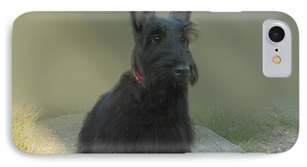 Adorable Scottie On The Rocks Scottish Terrier   IPhone Case by Heinz G Mielke