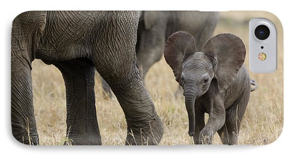 African Elephant Mother And Under 3 IPhone Case by Suzi Eszterhas