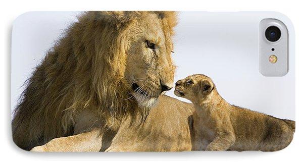 African Lion Panthera Leo Seven Phone Case by Suzi Eszterhas