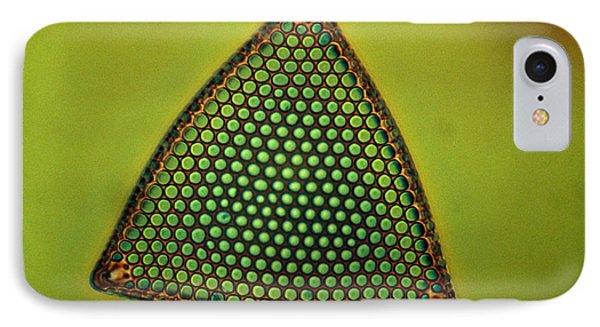 Algae, Diatom, Triceratium Ladus, Lm Phone Case by Eric Grave