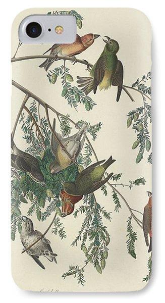 American Crossbill IPhone 7 Case by John James Audubon