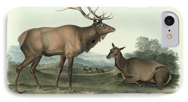 American Elk IPhone Case by John James Audubon