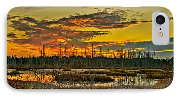 An November Sunset In The Pines IPhone Case by Louis Dallara