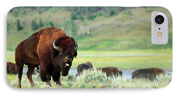 Angry Buffalo IPhone 7 Case by Todd Klassy