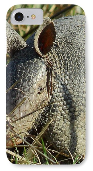 Armadillo By Morning Phone Case by Robert Frederick
