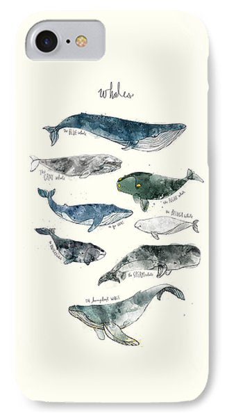 Whales IPhone Case by Amy Hamilton