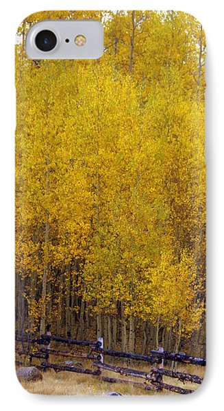 Aspen Fall 2 Phone Case by Marty Koch