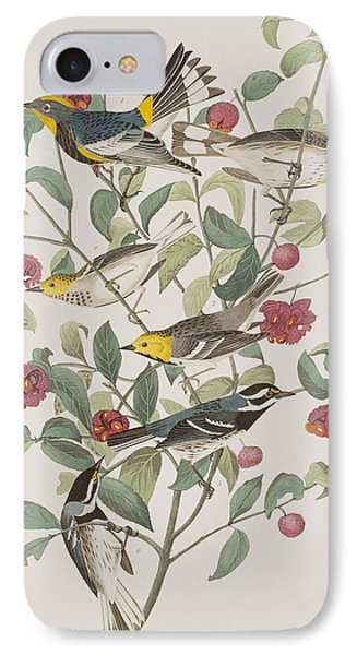 Audubons Warbler Hermit Warbler Black-throated Gray Warbler IPhone 7 Case by John James Audubon