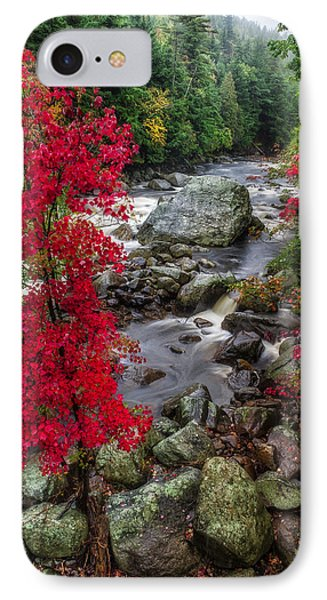 Ausable River IPhone Case by Mark Papke