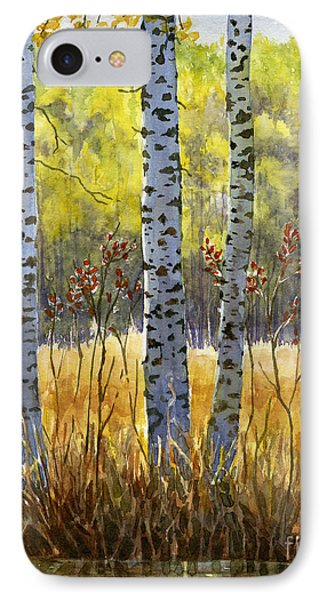Autumn Birch Trees In Shadow IPhone Case by Sharon Freeman