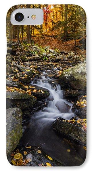 Autumn Glory At Bushkill Falls State Park Pennsylvania Usa IPhone Case by Vishwanath Bhat