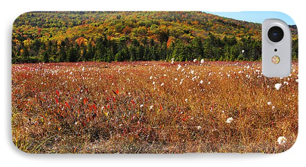 Autumn In The Glades Phone Case by Thomas R Fletcher