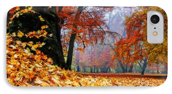 Autumn In The Woodland Phone Case by Hannes Cmarits