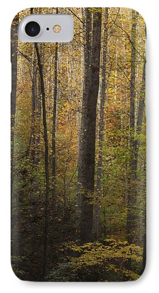 Autumn In The Woods Phone Case by Andrew Soundarajan