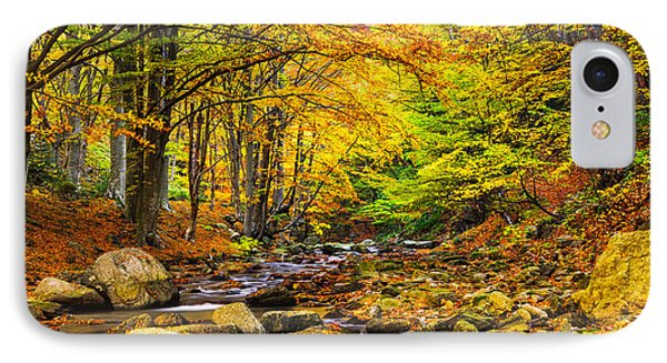 Autumn Landscape Phone Case by Evgeni Dinev
