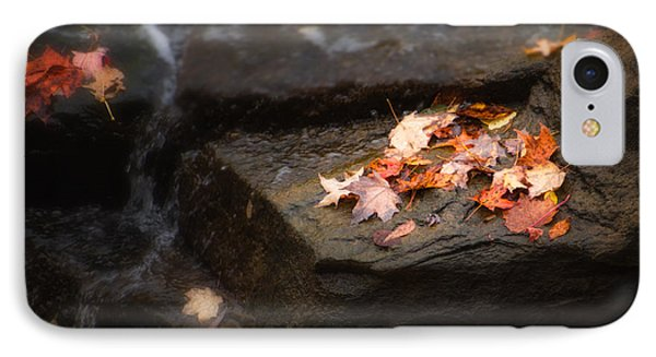 Autumn Leaves IPhone Case by Tom Mc Nemar