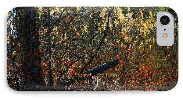 Autumn On The Sough IPhone Case by Julie Dant