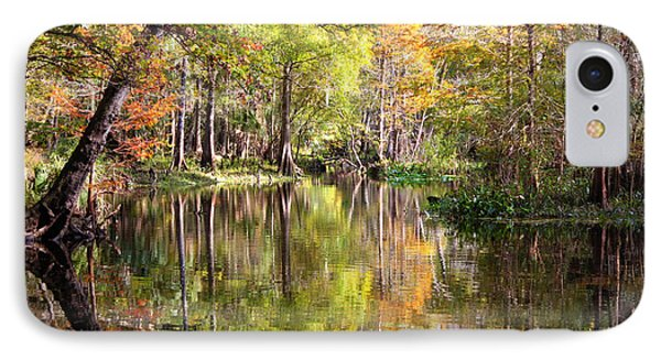 Autumn Reflection On Florida River Phone Case by Carol Groenen