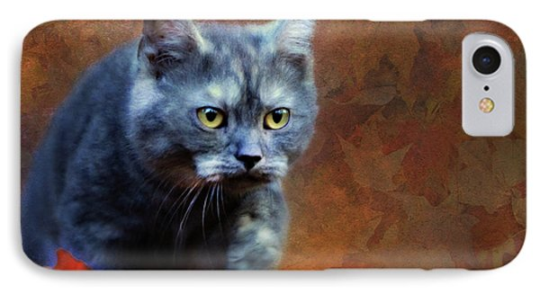 Autumn Romp Cat Art IPhone Case by Georgiana Romanovna