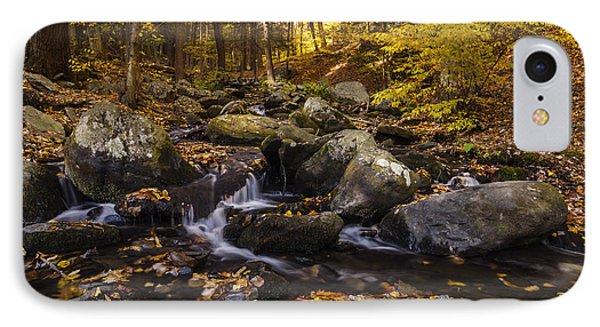 Autumn Stream In Bushkill Falls State Park Pennsylvania Usa IPhone Case by Vishwanath Bhat