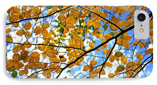 Autumn Tree Branches IPhone Case by Elena Elisseeva