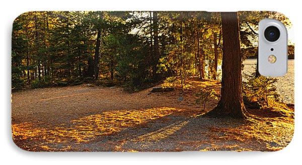 Autumn Trees Near Lake IPhone Case by Elena Elisseeva