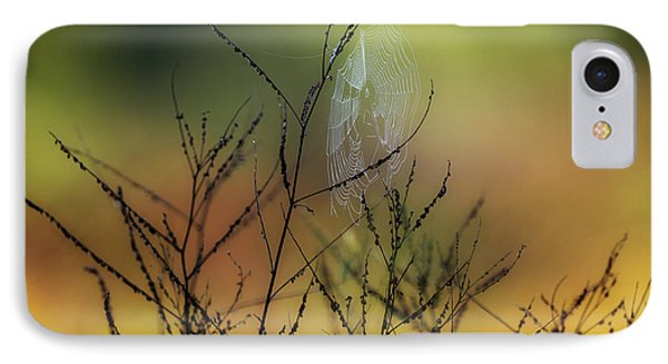 Autumn Web IPhone Case by Bill Wakeley