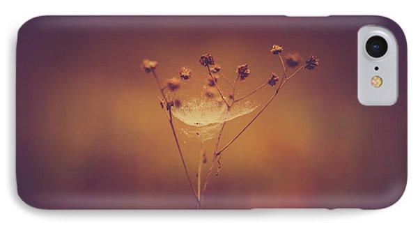 Autumn Web IPhone Case by Shane Holsclaw