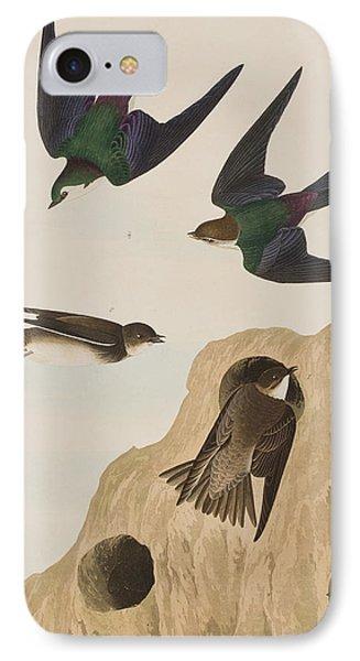 Bank Swallows IPhone 7 Case by John James Audubon