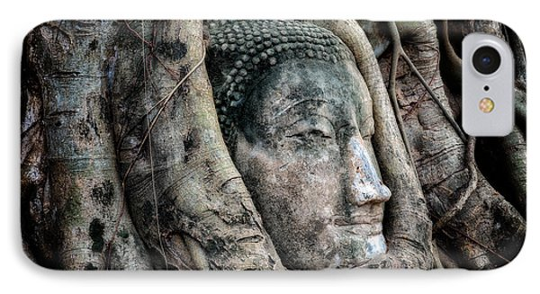 Banyan Tree Buddha IPhone Case by Adrian Evans