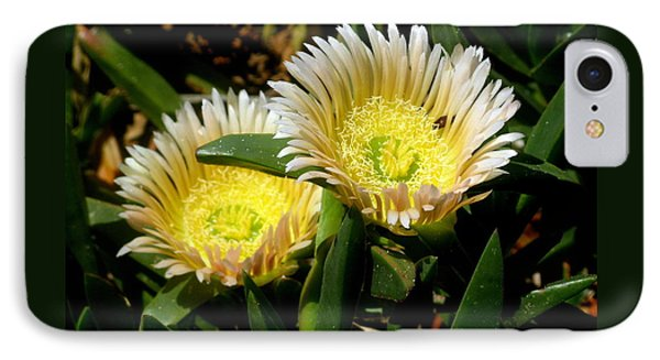 Beach Flower Phone Case by Joyce Woodhouse