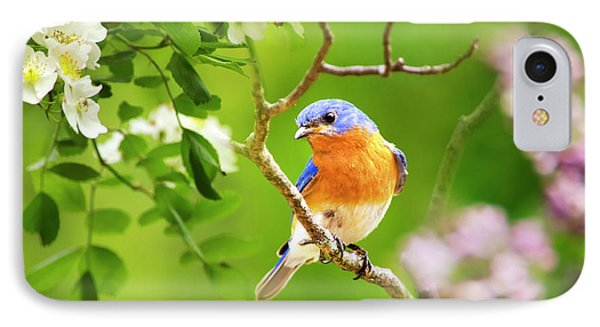 Beautiful Bluebird IPhone 7 Case by Christina Rollo