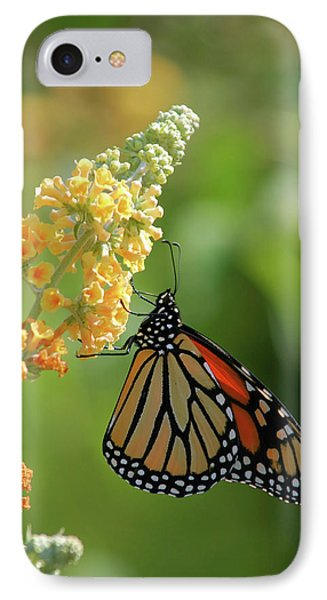 Beautiful Butterfly Phone Case by Karol Livote