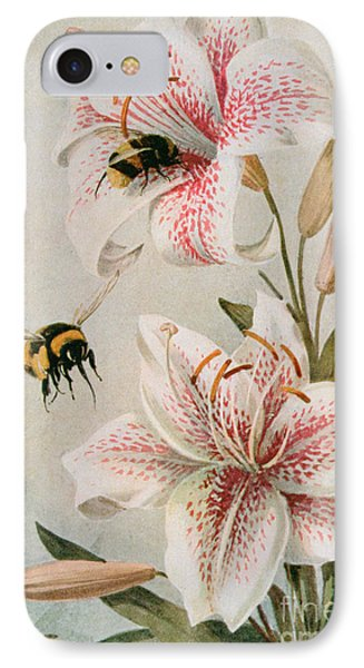 Bees And Lilies IPhone Case by Louis Fairfax Muckley