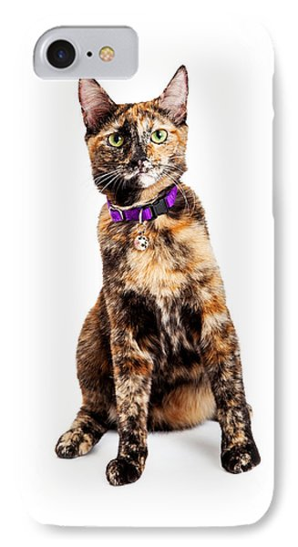 Bengal Kitty Cat Sitting IPhone Case by Susan Schmitz