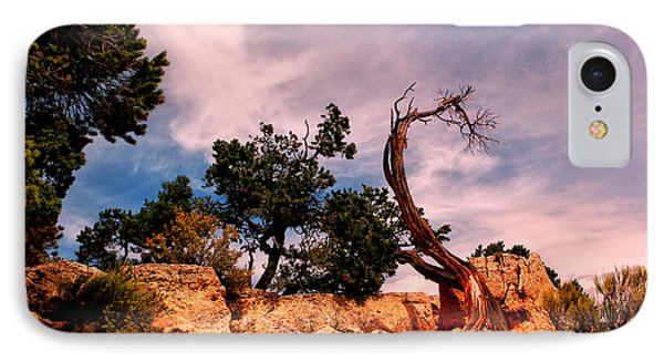 Bent The Grand Canyon IPhone Case by Tom Prendergast