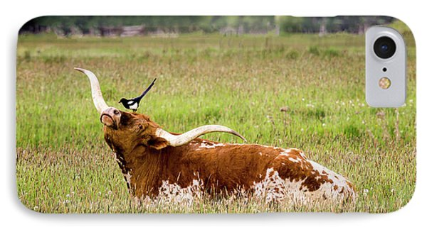 Best Friends - Texas Longhorn Magpie IPhone Case by TL Mair