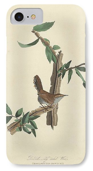 Bewick's Long-tailed Wren IPhone Case by John James Audubon