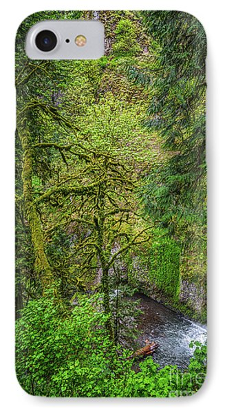Bigfoot Country Phone Case by Jon Burch Photography