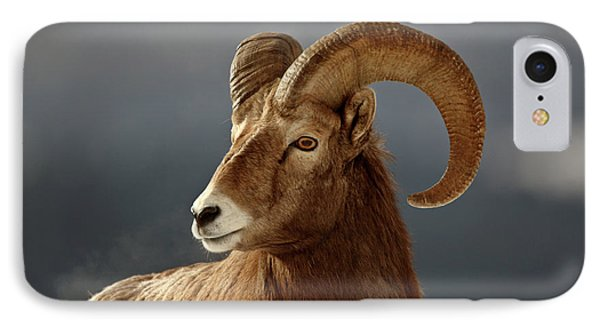Bighorn Sheep In Winter Phone Case by Mark Duffy