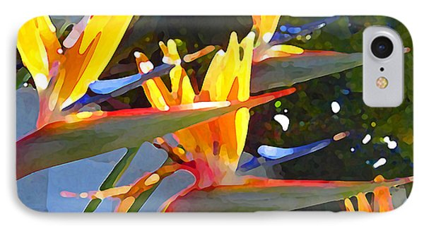 Bird Of Paradise Backlit By Sun IPhone Case by Amy Vangsgard