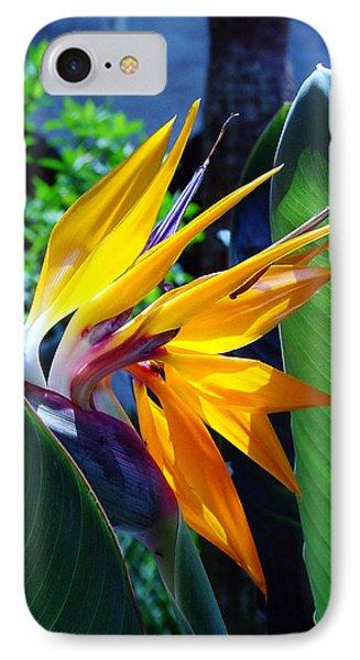 Bird Of Paradise Phone Case by Susanne Van Hulst