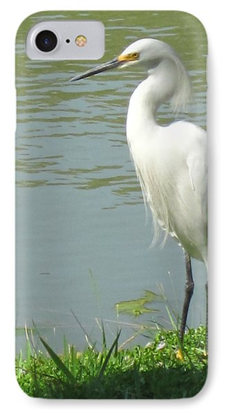 Bird IPhone 7 Case by Sandy Taylor
