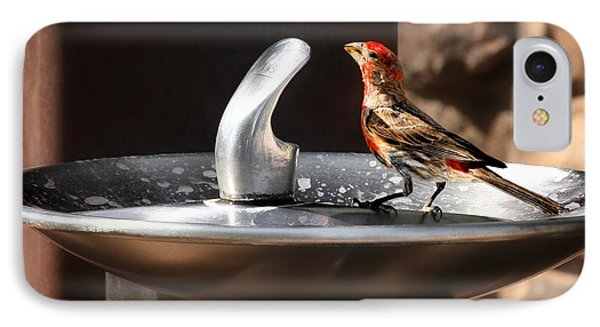 Bird Spa Phone Case by Christine Till