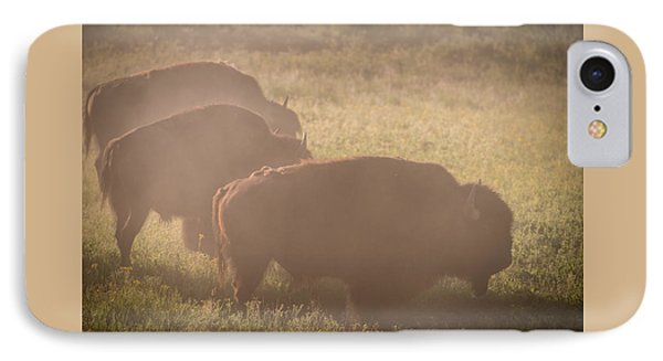 Bison Morning Mist Yellowstone IPhone Case by Steve Gadomski
